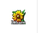 Download Imagine